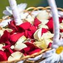 Eheringe im Blumenkorb - Hochzeitsreportage in Kronach