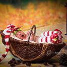 Weihnachtsbaby Fotoshooting in Muehltroff in Sachsen